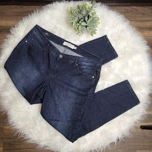 Torrid Denim Skinny Fit Jeans